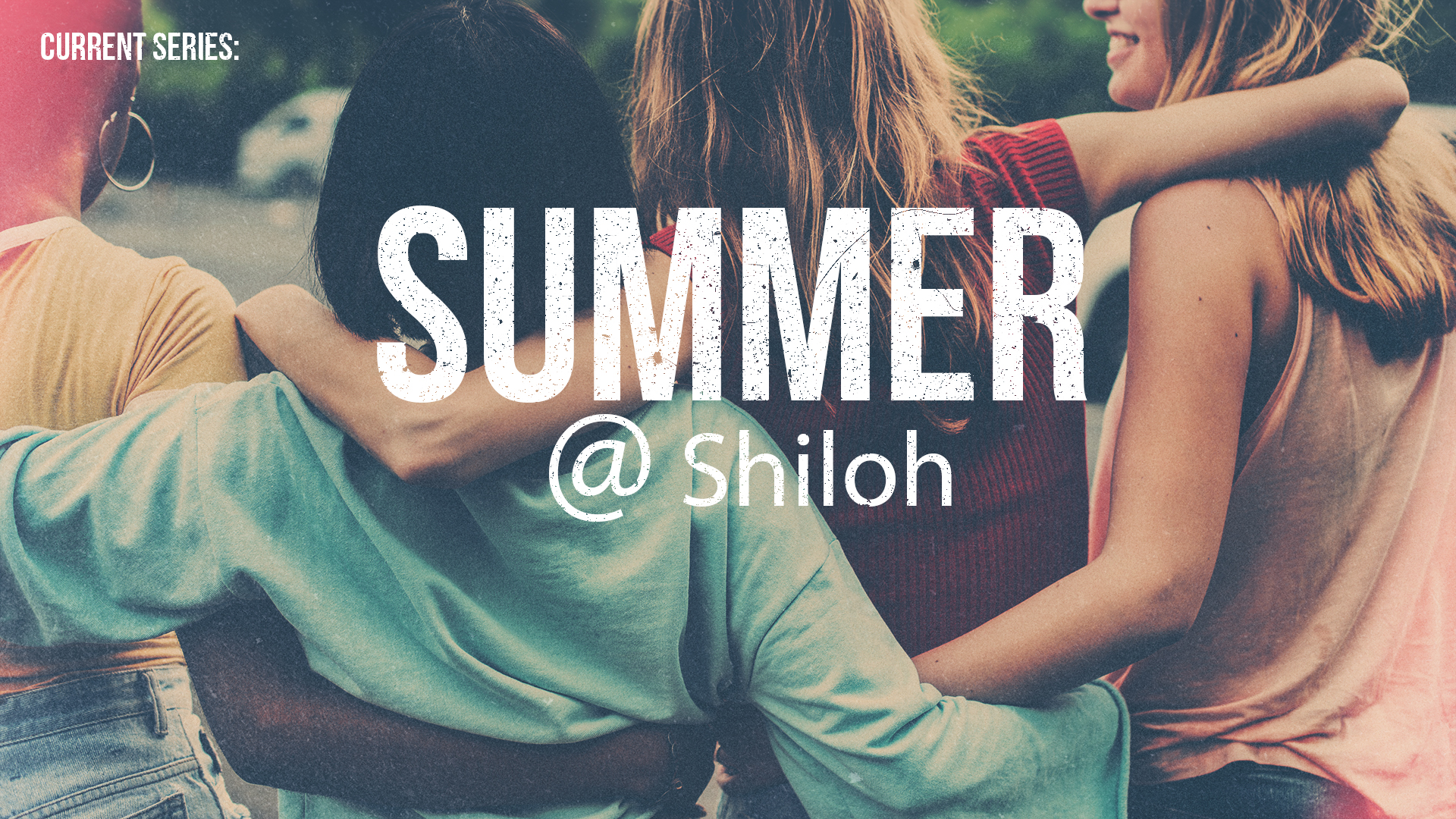 Current Series: Summer at Shiloh